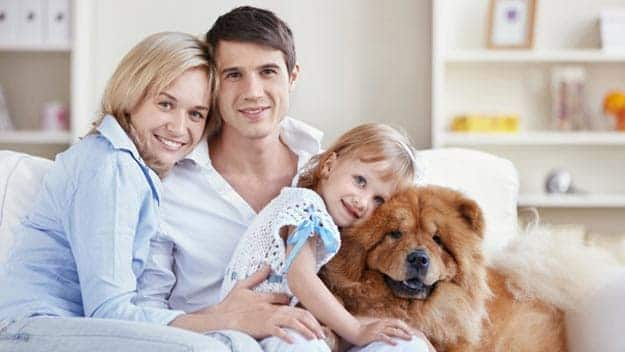Wills & Trusts dog-young-family Direct Wills Purfleet